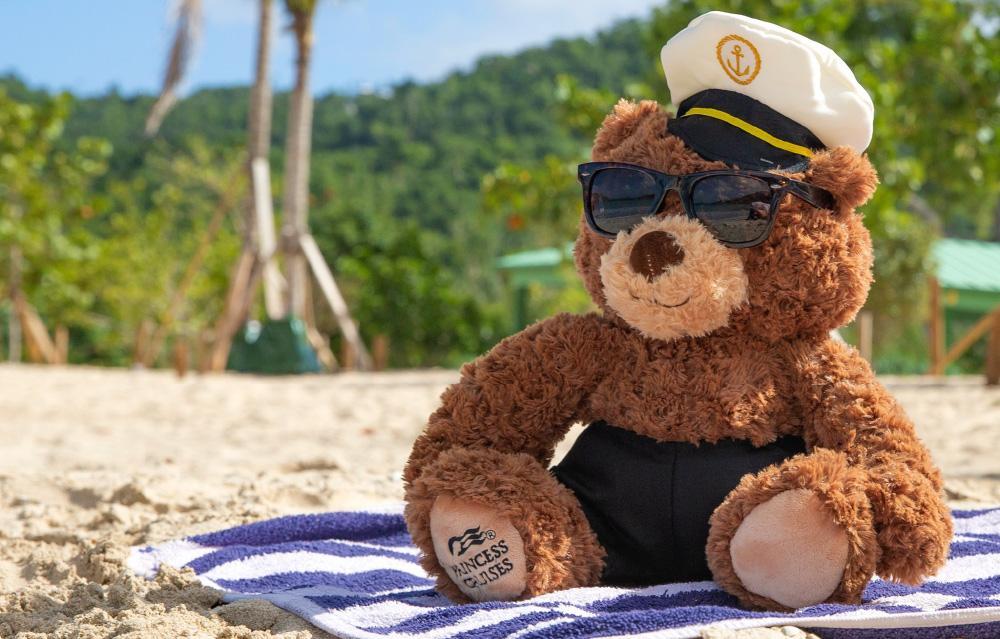 teddy on beach